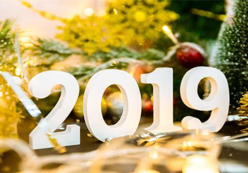 2019年合肥科技职业学院成人高考招生简章